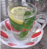 תה עם נענע