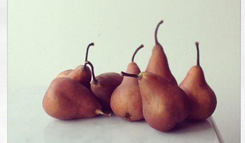 Still Life in Pears